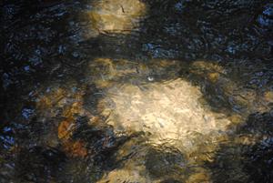 Wassergold - Lichtstrahlen auf Wasser